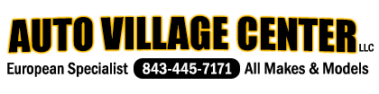 Auto Village Center Logo